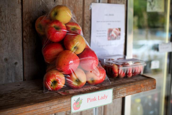 沿道にはリンゴやストロベリーの露店が並ぶ