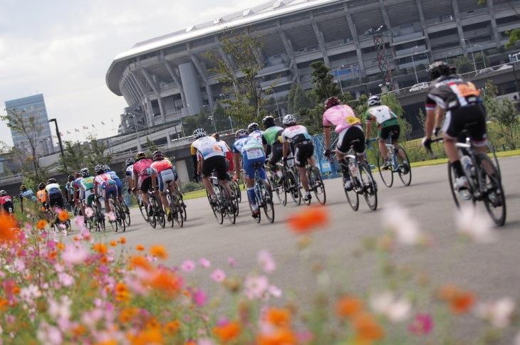 コスモスが咲く新横浜公園を走り抜ける バックがメイン会場の日産スタジアムだ