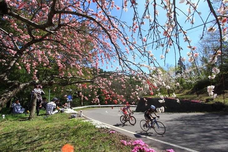 梅の花咲くエイドステーション