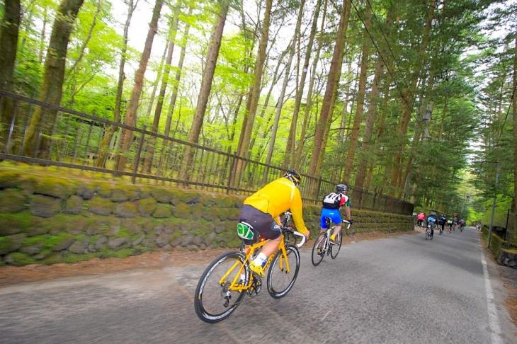 コースは緑溢れる別荘地を駆け抜けて行きます。