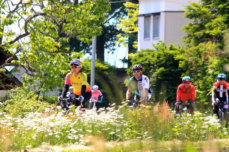 道端に咲き誇る花々と暖かい日射し包まれて走ります。絶好のサイクリング日和になりました。