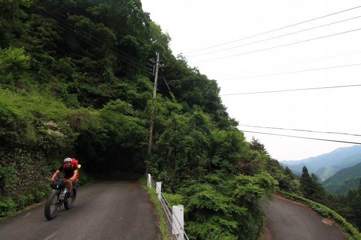 自然のトンネルの様なヘアピン