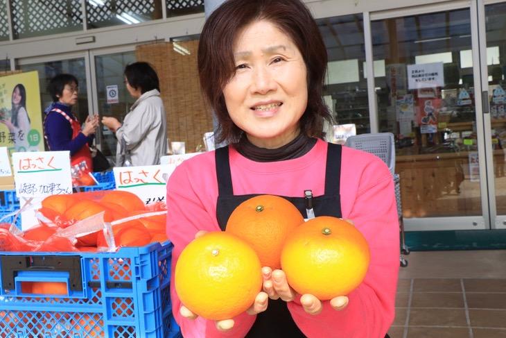 柑橘類も大分の名産品。取材に訪れた時にははっさくが一番美味しい季節だった