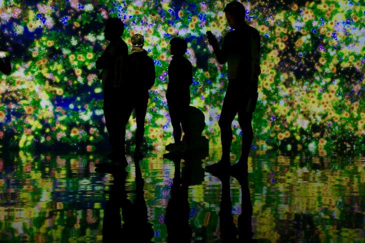 「チームラボギャラリー真玉海岸」暗闇の中に四季の花々が360度全ての壁面に途切れることなく投影されていた