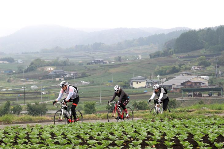 高原野菜を育てる畑が両手に広がるつまごいパノラマラインを駆け上がっていく