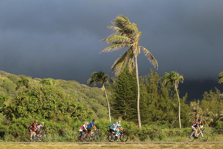 ヤシの木が風にたなびく。ここからの海岸線は風が敵だ