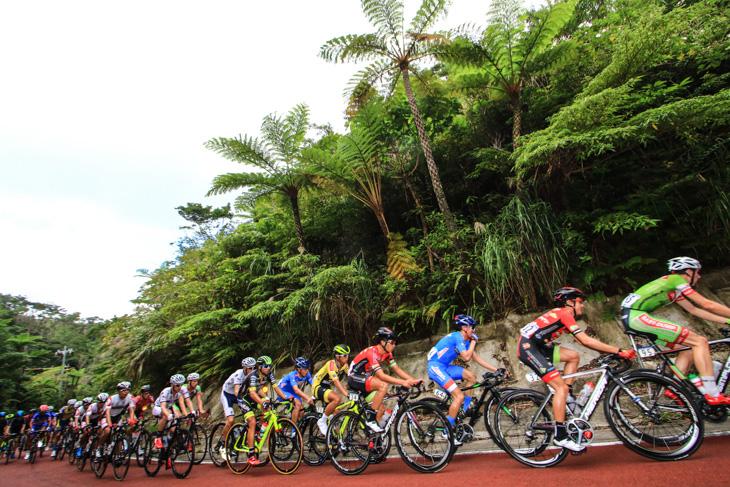 鬱蒼としたやんばるのジャングル地帯を進むチャンピオンレースのメイン集団