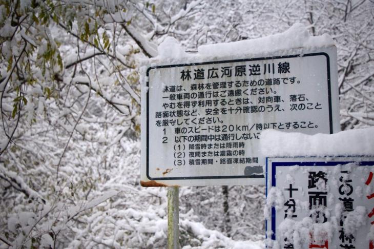 深い雪に包まれた広河原逆川林道
