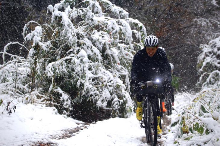 雪で倒れた木を避けながらダブルトラックを走る