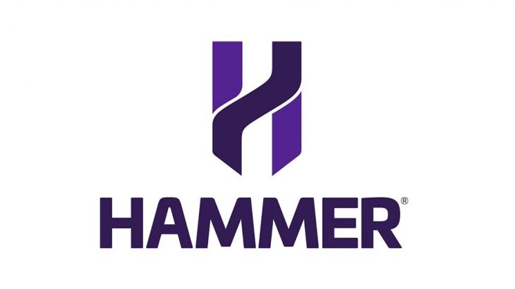 ハンマーシリーズロゴ