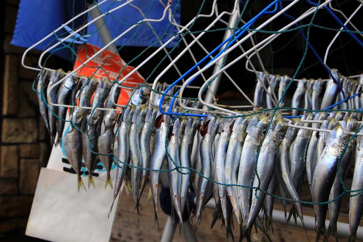漁港が近くにあるだけに魚屋の軒先では天日干しが行われていたりする