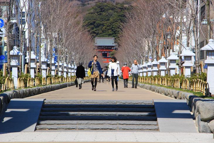 二の鳥居から三の鳥居までは段葛が整備されており、鶴岡八幡宮の本宮まで一直線の道が続く