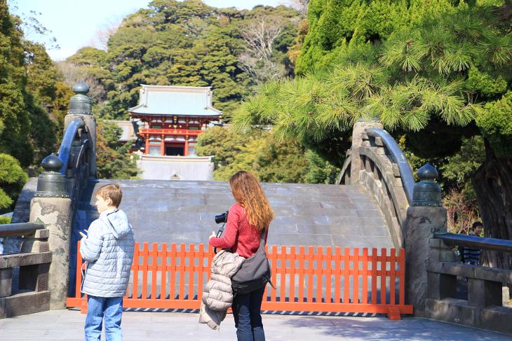 源平橋から本宮を眺める