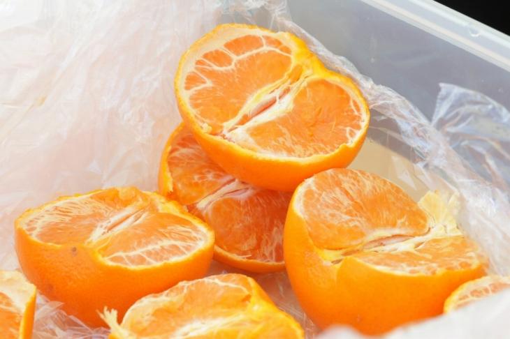 補給の柑橘!愛媛といえばコレ。