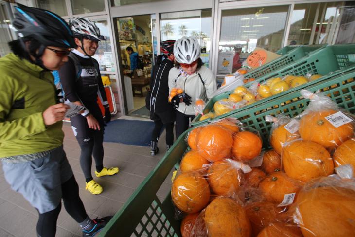 伯方島の道の駅で柑橘類を購入。こんな補給食もいいもんだ