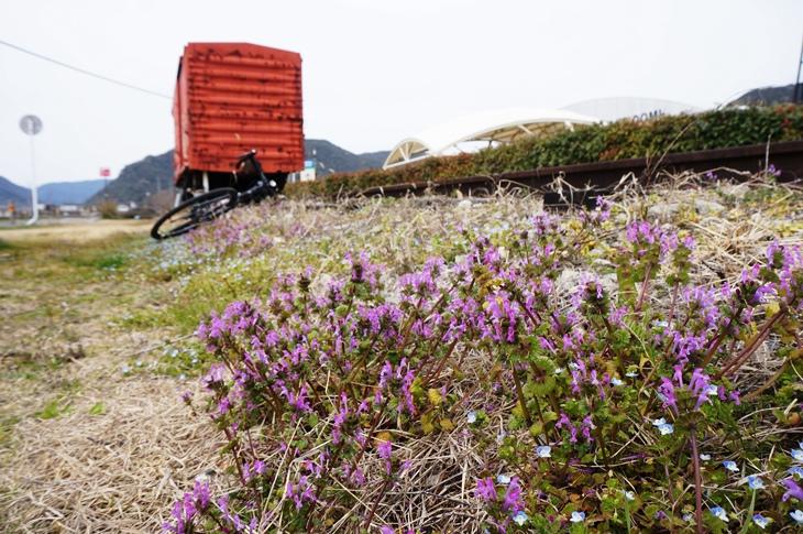 サイクリングロード沿いの和気鵜飼谷交通公園にある有蓋貨車
