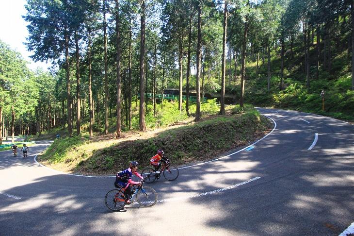 古賀志林道を全体で迫力いっぱいに観戦できるポイントがこの高台からのアングル