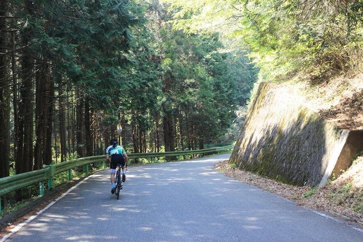 左側に緑色のガードレールが現れると古賀志林道の登りが始まる