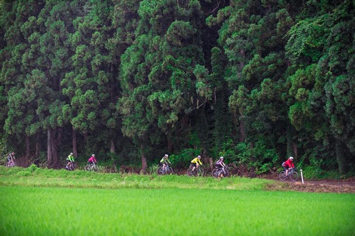 濃密な緑の中を走っていく越後長岡チャレンジサイクリング2017