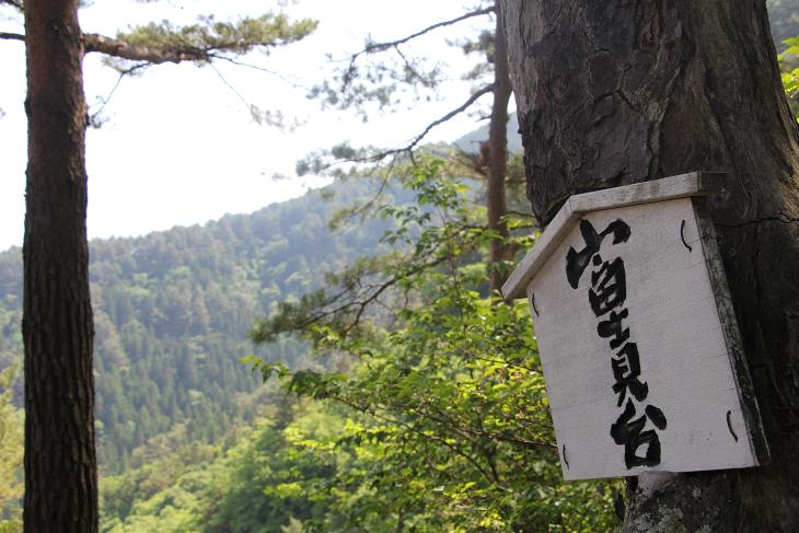 本来ならば富士山も写る画角なのだが、モヤで映らない