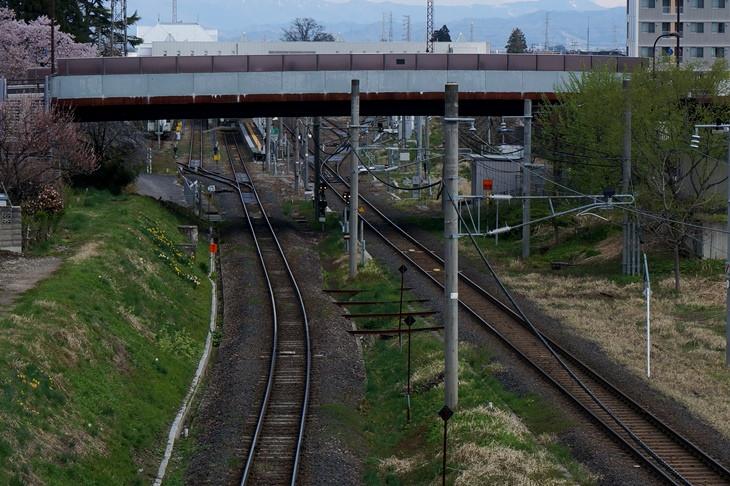 左右で線路の幅が違うのが分かります?向かって右が標準軌[1435mm]の奥羽本線(山形新幹線)、左が狭軌[1067mm]の米坂線。