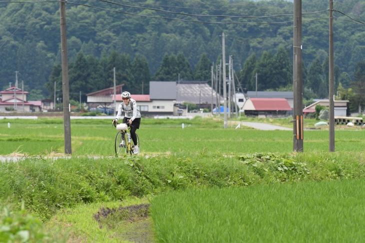 米どころ秋田を実感する田園地帯