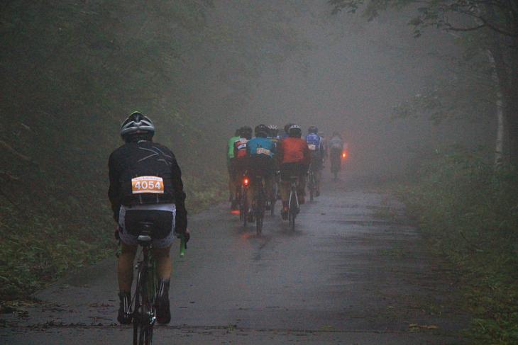 朝靄がかかり鬱蒼とする山道を進む