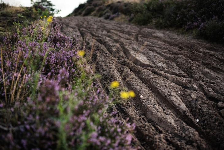 ベルギー特有の砂コース