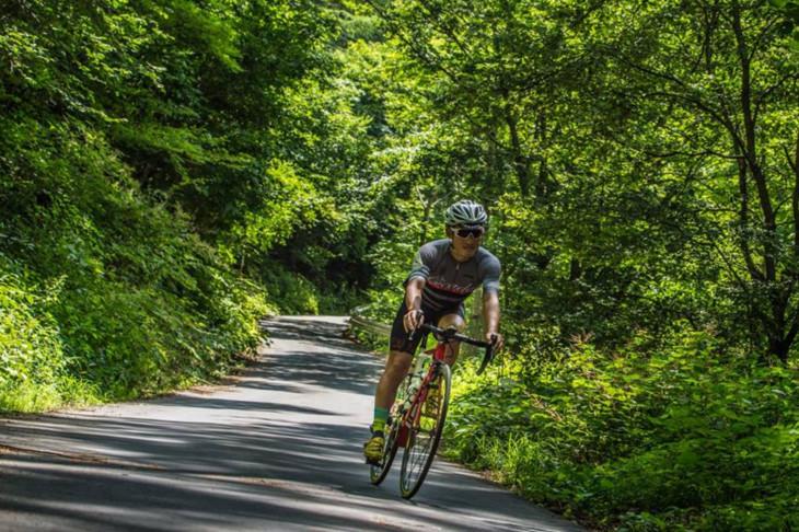 やはりにわかには国道とは思えない雰囲気ある緑の道をダウンヒル