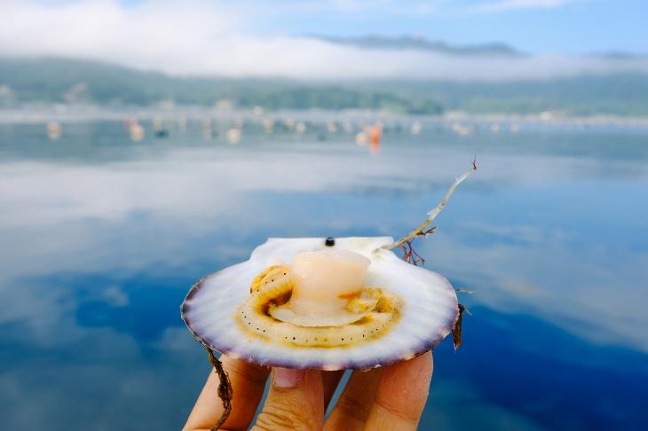 ディナーでは三陸のホタテを始め赤ざら貝やしゅうり貝などの魚介類も振る舞われる