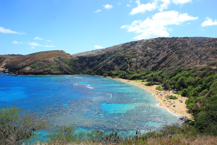 美しい自然と海が楽しめるハナウマベイまでライド