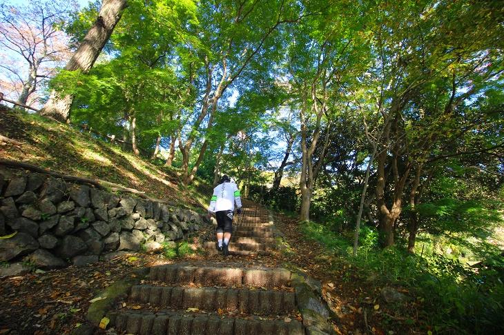 駐輪所に自転車を停め、林の中の階段を登ると音楽寺です