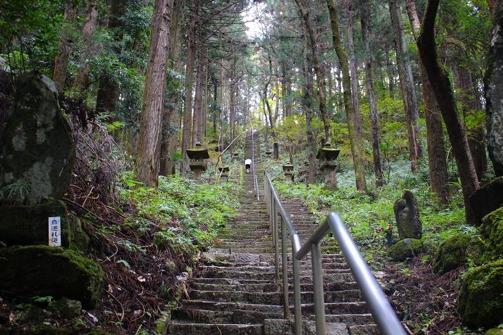 真っ直ぐに伸びる石段。もののけ姫の世界に迷い込んだような幻想的な雰囲気です