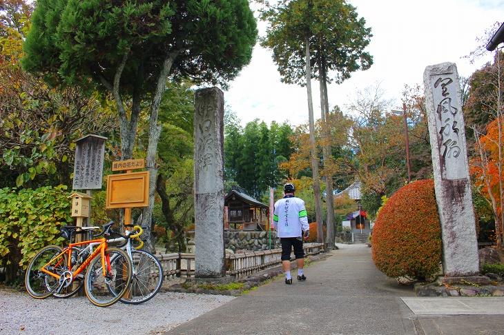 枝垂れ桜が有名な長泉院は境内にも草花が多く、背の高い木々などが目につきます