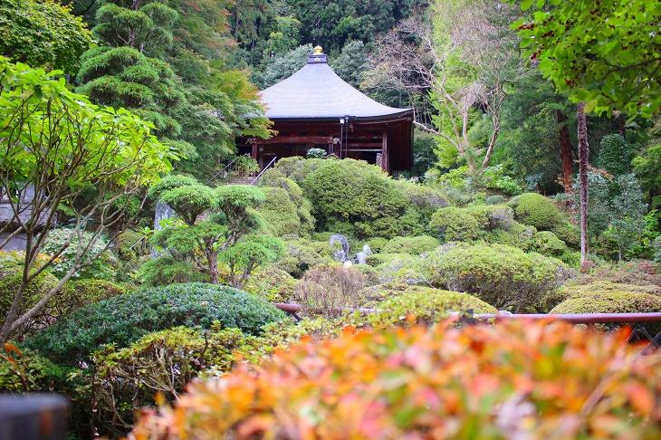 秩父札所随一という浄土庭園は様々な草花が隙間なく植えられ、京都の寺院のような美しい光景が広がっています