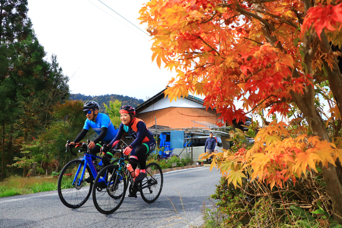 美しく色づいた紅葉。寒さもあって、一足早く色づいているようでした