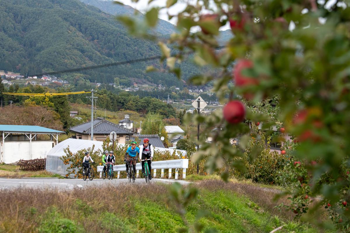 リンゴ畑の横を行く北方山麓線の上り