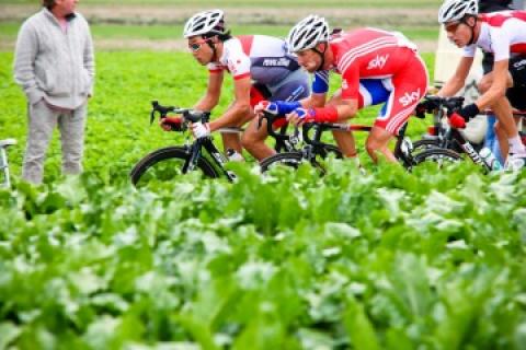 9月開催のロード世界選手権 日本...
